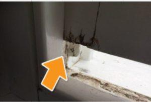 Minor sporadic wood rot to window frame
