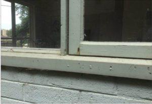 Bubbling /peeling paint on window frame