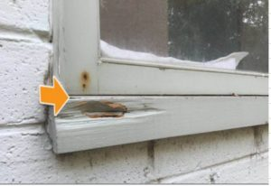 Signs of rot damage to window sills/frame