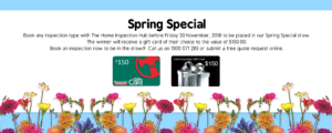 Spring Promotion Website Homepage 300x120 - Spring Promotion - Website Homepage